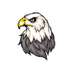 Bald eagle logo. Wild birds drawing. Head of an eagle. Vector graphics to design.
