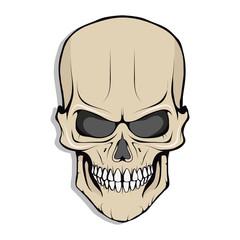 Skull illustration. Evil skull on white background. Vector graphics to design.