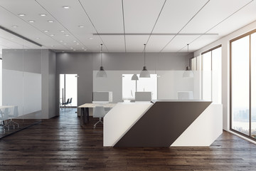 Contemporary office with reception