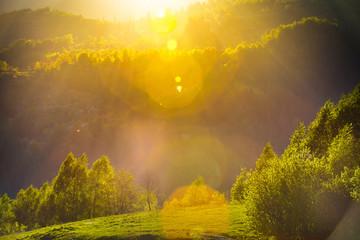 Spring sunset landscape with flare