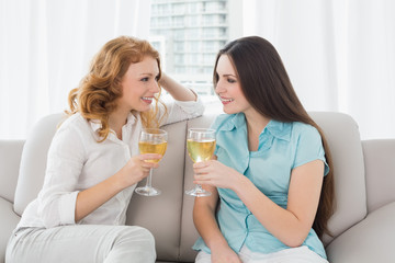 Young female friends with wine glasses at home