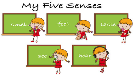Five Senses on Blackboard with Girl Character