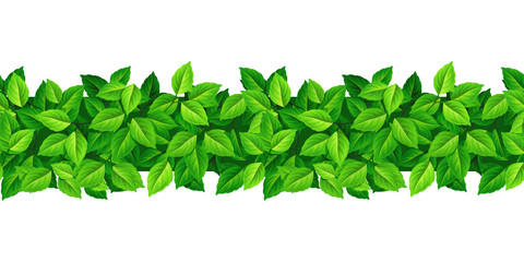 Vector horizontal seamless background with green leaves. Wall mural