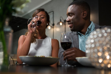 Happy couple having red wine while dining