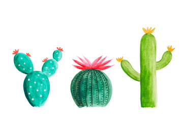 Watercolor cactus set isolated on white background. Drawing by hand and painted illustration.