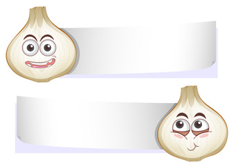 Garlic with Blank Banner on White Background