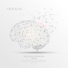 Brain shape digitally drawn low poly wire frame.