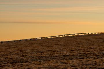 夕暮れの平原とパイプライン