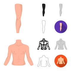 Part of the body, limb cartoon,black,flat,monochrome,outline icons in set collection for design. Human anatomy vector symbol stock web illustration.