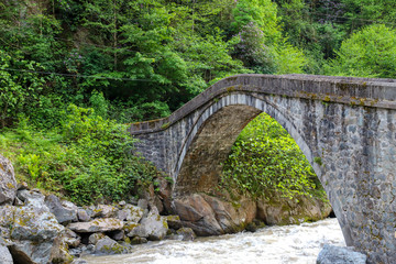 Historical bridges and rivers firtina rivers and cifte bridge Rize Turkey