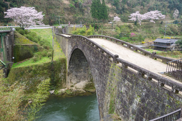 霊台橋と満開の桜(熊本県美里町)