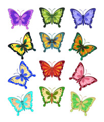 A set of twelve brightly coloured butterflies/Twelve bright butterflies with open wings on white background