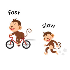 Opposite fast and slow vector illustration