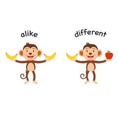 Opposite alike and different vector illustration