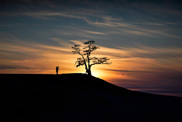 Beautiful Sunset with isolated tree