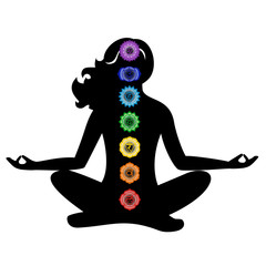 the chakras set