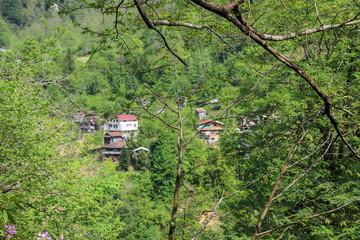 Traditional village houses Artvin savsat