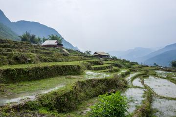 Landscape and rice terraces near Sapa, Vietnam.