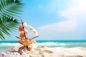 Landscape with shells on tropical beach. Rest on the beach. Travel. Background with copy space.