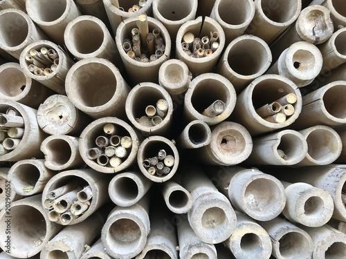 Bambu Seco E Empilhado Stock Photo And Royalty Free Images On - Bambu-seco