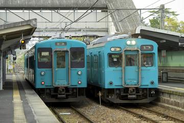 桜井線(万葉まほろば線)の電車(2018年4月撮影)
