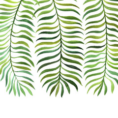 background with watercolor fern leaves
