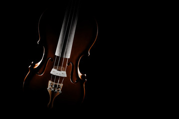Violin close up isolated. Classical music instruments of orchestra