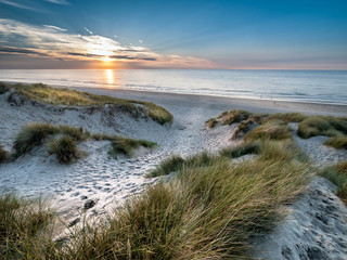 White sandy path within marram grass covered dunes leading towards the beach at sunset