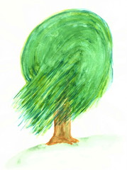 Drawing with watercolor paint: a green willow tree.