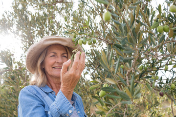Happy woman harvesting olives from tree