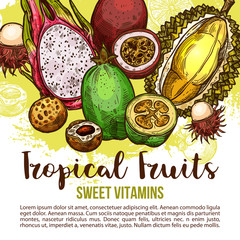 Tropical fruit poster of exotic asian berry sketch