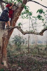 Female legs climbing tree in misty fog forest