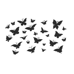 Butterflies are black on white background. Patterned insects isolated.