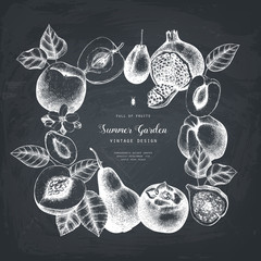 Vector template desin. Hand drawn  fruits  illustrations. Fig, apple, pear,  peach, apricot, persimmon, pomegranate, quince, grapes drawing. Sketched style frame on chalkboard