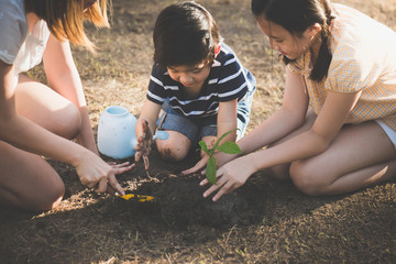 Asian children and mother planting young tree