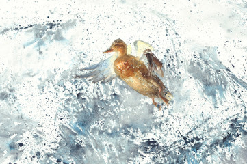 a duck in the sea splatter watercolor background