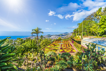 Tropical Botanical Gardens in Funchal, capital of  Madeira island, Portugal Fototapete