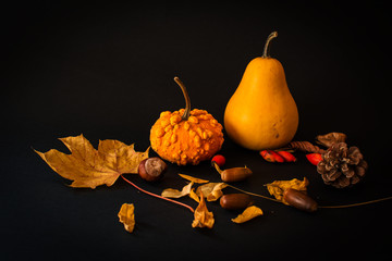 Autumn picture - orange pumpkins and leaves on a dark background