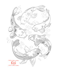 Set of black and white hand drawn koi