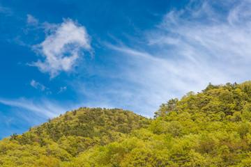 新緑の山と雲