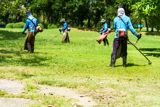 Mower worker cutting grass in green field
