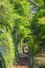 新緑とケーブルカーの線路