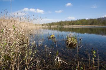 Lake in Hedeland at Copenhagen