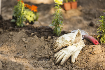 High angle view of gardening gloves with trowel on field at garden