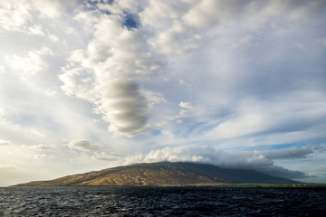 Maui Photographs