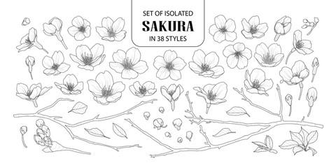 Set of isolated sakura in 38 styles.