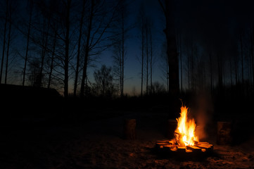 Burning campfire in chilly autumn evening.