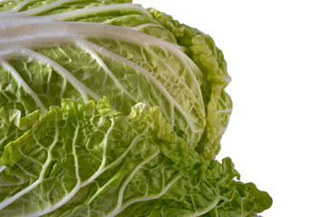 Pekinese green cabbage on the white isolated background. Close-up