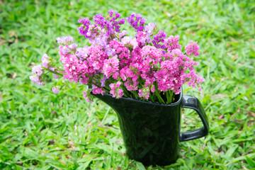 Fuchsia dry flower