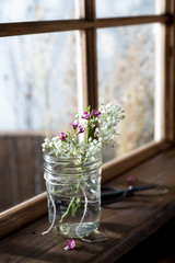 Fresh Flowers on a Windowsill